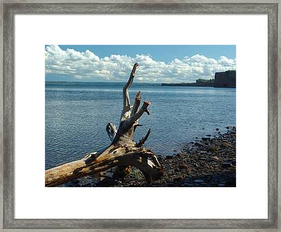 Reach For The Sky Framed Print by George Cousins