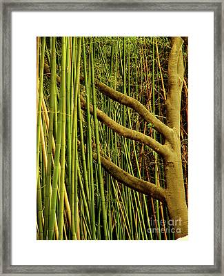Reach Out - And Grab Someone Framed Print
