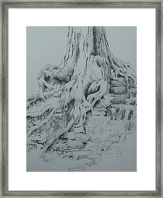 Reaching For The Water Framed Print by Ramona Kraemer-Dobson