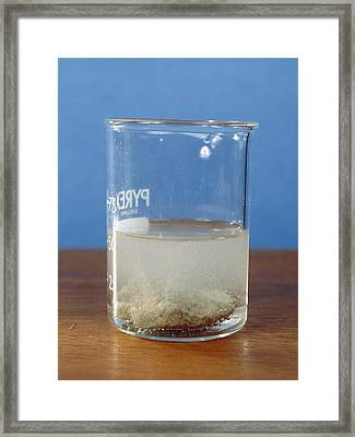 Reaction Rates Framed Print by Andrew Lambert Photography