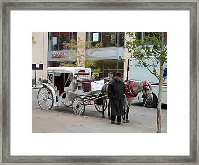Ready For A Buggy Ride Framed Print