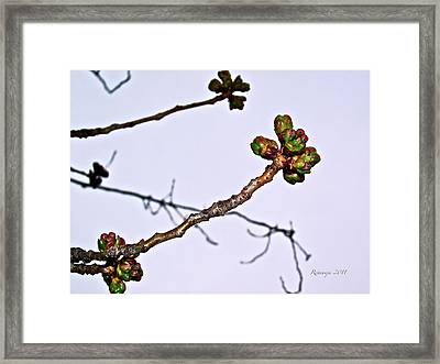 Ready For Life Reflection Framed Print by Rotaunja