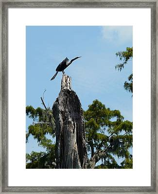 Ready For Take-off Framed Print by Rdr Creative