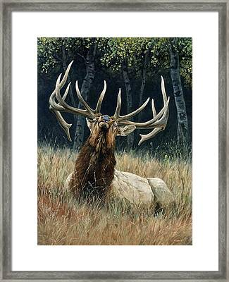 Ready For Trouble Framed Print
