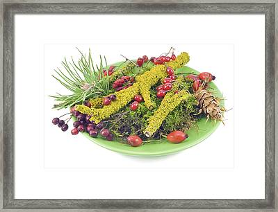 Framed Print featuring the photograph Real Autumn Wood Mix by Aleksandr Volkov