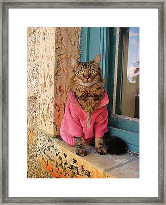 Real Men Wear Pink Framed Print by Joann Biondi