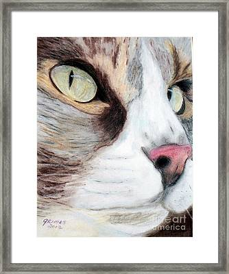 Really Intense Framed Print