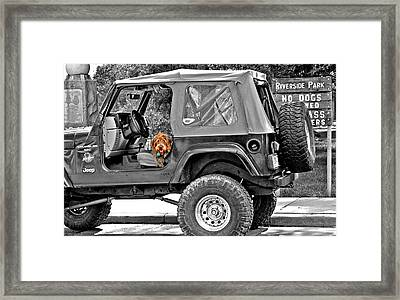 Rebel With A Cause Framed Print by Jenna Cornell