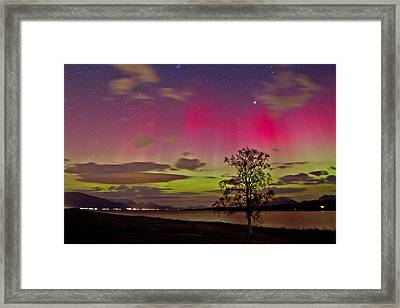 Red And Green Framed Print by Frank Olsen
