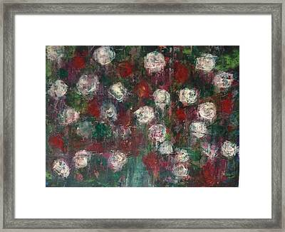 Red And White Roses Framed Print by Kelli Perk