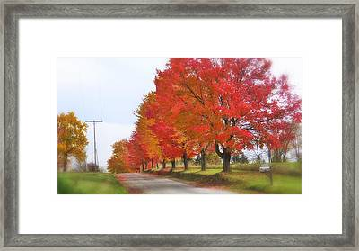 Red And Yellow Mercer Pa Framed Print