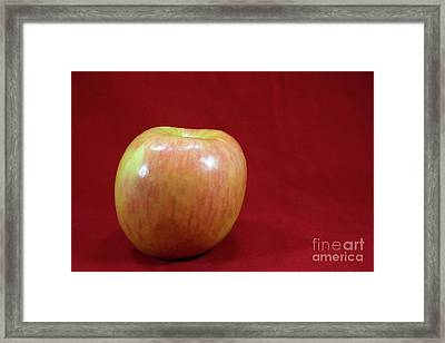 Framed Print featuring the photograph Red Apple by Michael Waters