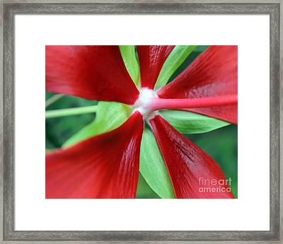 Red Awakening Framed Print