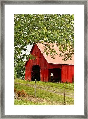 Red Barn With Pink Roof Framed Print by Douglas Barnett