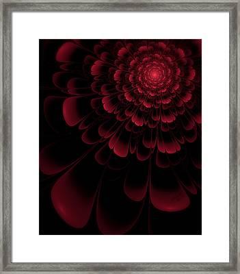 Red Beauty Framed Print