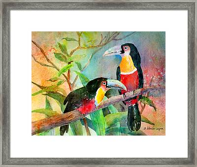Red-breasted Toucans Framed Print by Arline Wagner