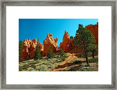 Red Canyon Trail Framed Print