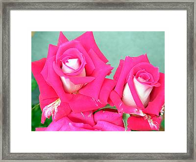 Framed Print featuring the digital art Red Carnations by Vicky Tarcau