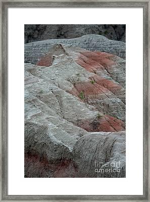 Red Framed Print by Chris Brewington Photography LLC