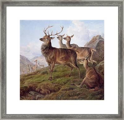 Red Deer In A Highland Landscape Framed Print by Charles Jones