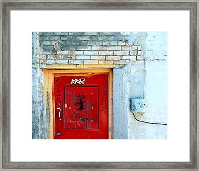 Red Door 325  Framed Print