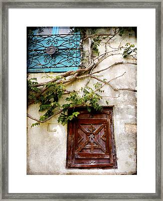 Red Door Blue Door Framed Print