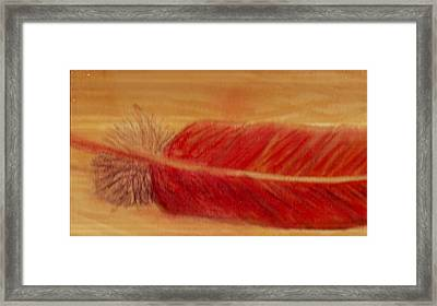 Red Feather Framed Print by Anne-Elizabeth Whiteway