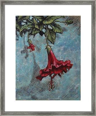 Red Flower Framed Print by Greg Riley