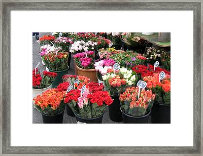 Red Flowers In French Flower Market Framed Print by Carla Parris