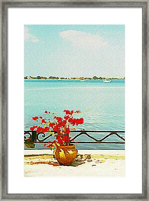 Red Flowers On The Bay Framed Print by Joan McArthur