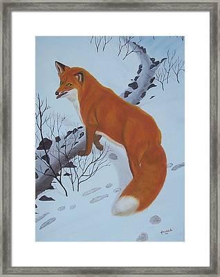 Red Fox In Snow Framed Print by Melinda Fox