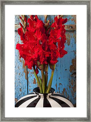 Red Glads Against Blue Wall Framed Print by Garry Gay