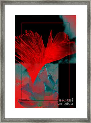 Red Heart Flower Framed Print by Christine Mayfield