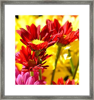Framed Print featuring the photograph Red Heat.... by Tanya Tanski