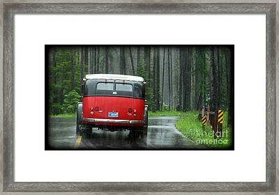 Red In The Rain Framed Print