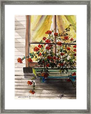 Red Ivy Geranium Framed Print by John Williams