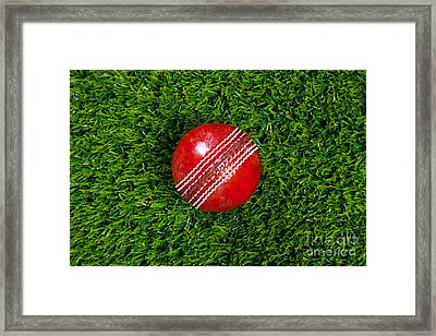 Red Leather Cricket Ball On Grass Framed Print