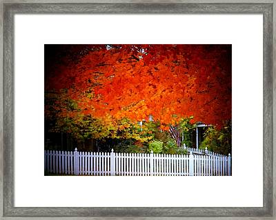 Red Leaves And White Fence Framed Print