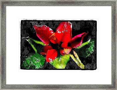 Red Leaves Framed Print by Mauro Celotti
