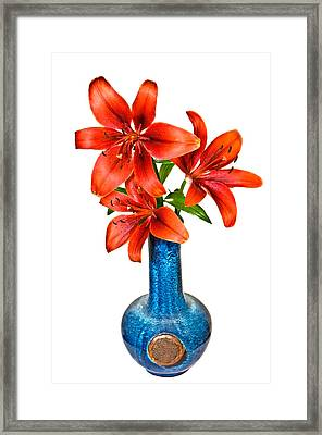 Red Lilies In Blue Vase Framed Print by Susan Leggett