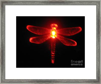 Red Midnight Dragonfly Framed Print