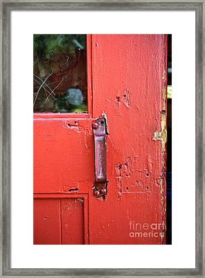 Red Of Course Framed Print by Gwyn Newcombe
