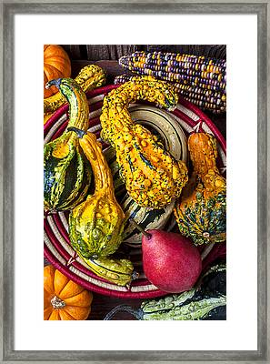 Red Pear And Gourds Framed Print by Garry Gay