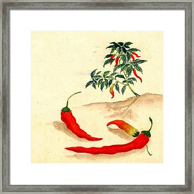 Red Peppers And Plant 1830 Framed Print by Padre Art