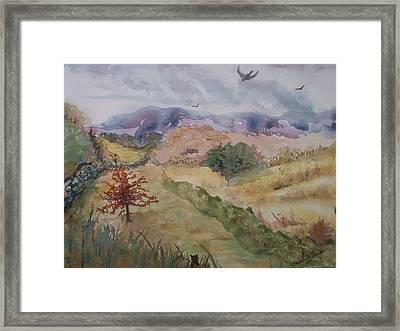 Red Pin Oak Framed Print