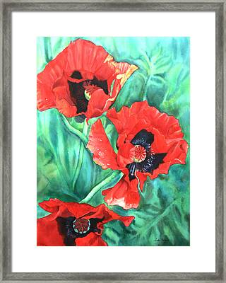 Red Poppies Framed Print by Leslie Redhead