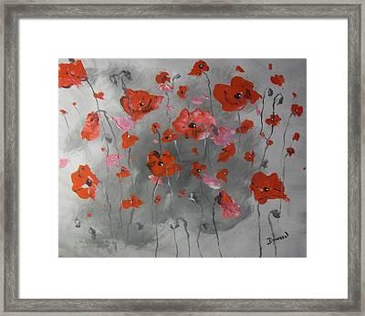 Red Poppies Framed Print by Raymond Doward