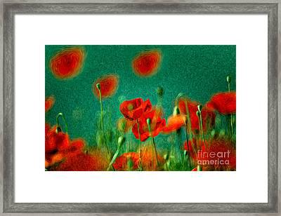 Red Poppy Flowers 07 Framed Print by Nailia Schwarz