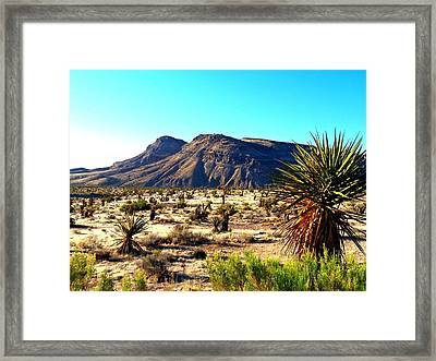 Red Rock Canyon 10 Framed Print by Randall Weidner