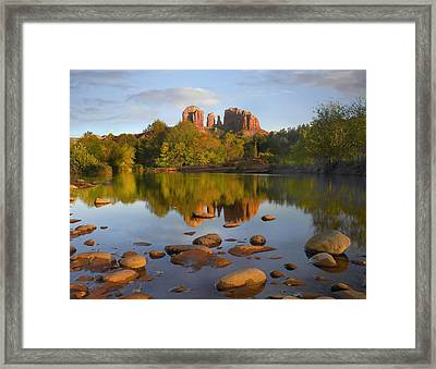 Red Rock Crossing Arizona Framed Print by Tim Fitzharris